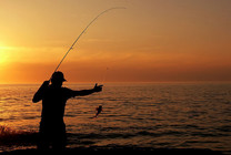 真正的钓鱼发烧友