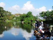 水质水色对钓鱼的影响