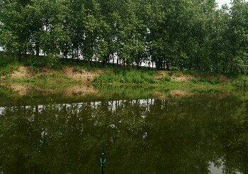 藕池河分支
