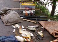 《钩尖上的中国》第7集 垂钓渔获差环保正当时