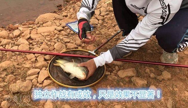 钓获大一条鲤鱼
