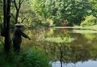 《钓鱼视频》第2集 民间野钓绝活泥巴方形底窝料