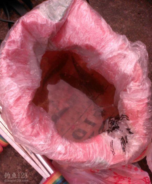 这是我们临时做的装鱼的袋子,鱼护放不到水里