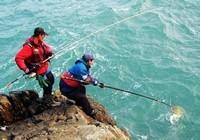 海钓的常用鱼饵