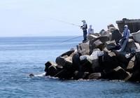 海钓常见的四种钓法