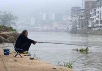 钓鱼打窝诱鱼小技巧