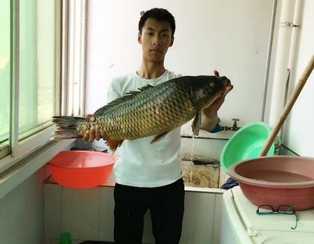 大战鱼岭水库,入护巨鲤 自制饵料钓翘嘴