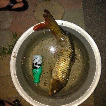 一人抽烟两人喝酒三人钓鱼