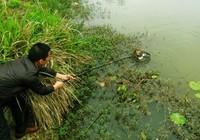 《媛来如此》地瓜讲解飞抄抄网的选择与摘鱼技巧(上)