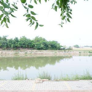 龙泉水岸休闲中心
