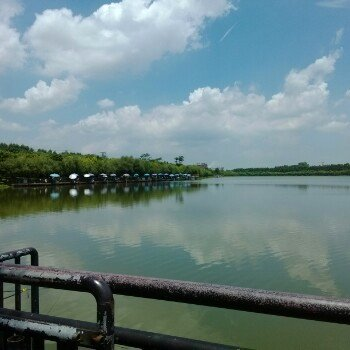 渔行江湖间