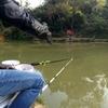 渔钓C娱乐