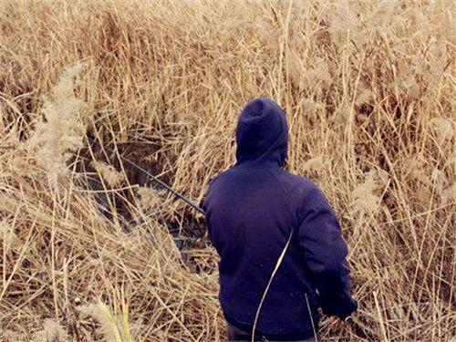 冬季野釣鯽魚