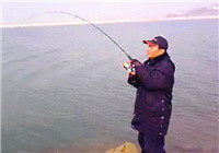 《水库钓鱼视频》 冬季水库路亚大草鱼