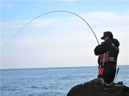 海钓中最常用到的钓法(三)