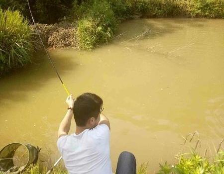 没有什么能够阻挡钓鱼人的脚步了! 龙王恨饵料钓草鱼