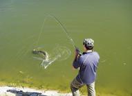 钓鱼与打麻将有着惊人的相似之处