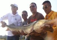 《渔我同行》第269集 神秘鱼塘钓获巨物鲟鱼