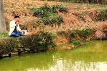 春季桃树油菜花开垂钓乡村鱼塘