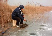 冬季yabotiyu--任意三数字加yabo.com直达官网