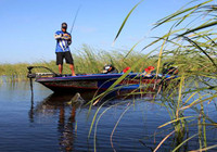 FLW钓鱼