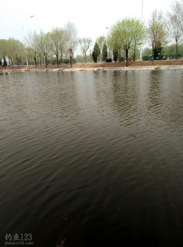 外环河一年四季都会欢迎五湖四海的渔客