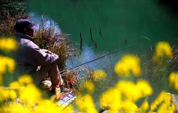 春天季節釣魚