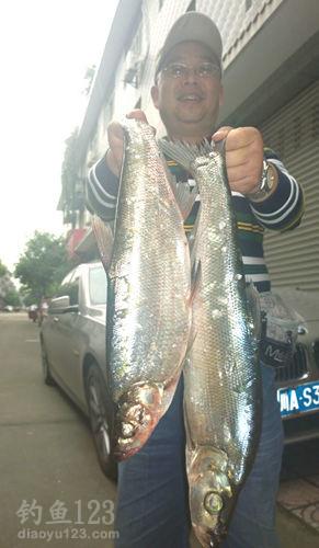 白龙湖钓大鱼