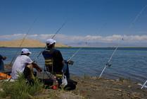 钓鱼爱好者的分类,看看你属于哪一种