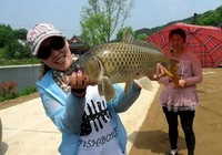鲇魚山水庫三天釣行,擒獲大鯽、大鯉、黃顙魚