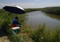 实战分析如何寻找有鱼道的钓点钓位