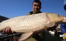 《渔我同行》第284集 白砂水库筏钓大鱼
