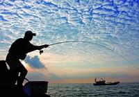 《宝岛渔很大》 20150726 北洋战役旧地重游幸福之门