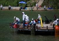《钓点大对决》第49集 天津静海垂钓园黑坑掐鱼比赛(1)