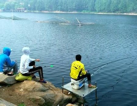 端午节游钓 自制饵料钓草鱼