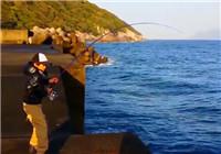 《海钓视频》 男孩码头钓获大青甘鱼