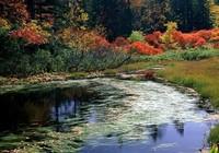 秋天垂钓大鱼如何选择钓位