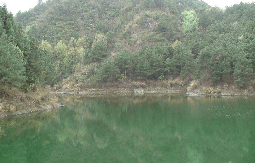 大沟河水库