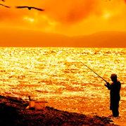 闲与不闲都钓鱼