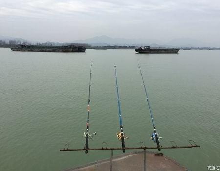 江邊冬釣鰱鳙
