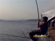 钓鱼大师水库钓大鱼的看漂抓口视频