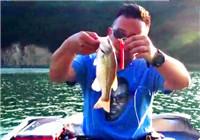 《托马斯路亚日记》 潘鲁越讲解作钓鲈鱼技巧