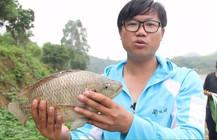 《钓技研》第7集 增城长冚水库钓罗非鱼 下篇
