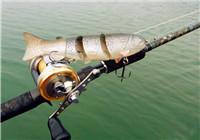 高手分享路亚鲈鱼的拟饵操控技巧和经验