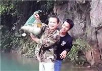 《垂钓对象鱼视频》 红水河手竿野钓擒获大鲤鱼