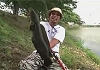 《路亚钓鱼视频》 男子路亚野钓擒获巨大黑鱼