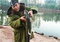 《垂钓对象鱼视频》 男子6.3米手竿野钓大草鱼