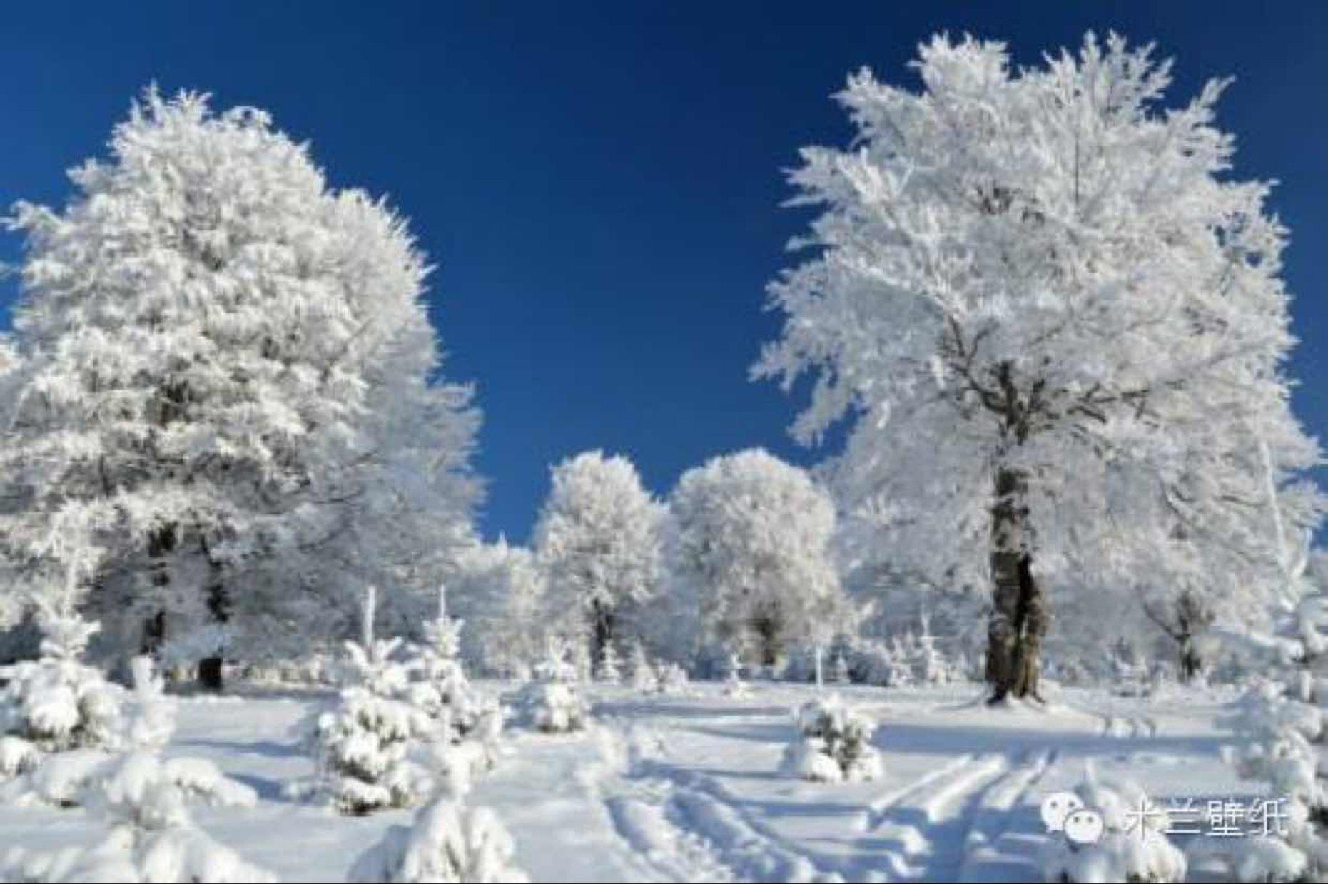 东北独钓寒江雪