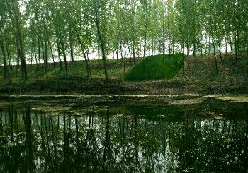 王月铺水库