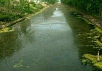 郑西村河天气预报
